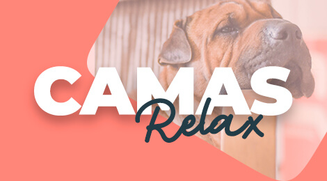 Camas comodas para perros, máximo confort