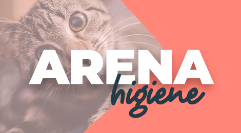 Arena de bentonita ultra absorbente para gatos