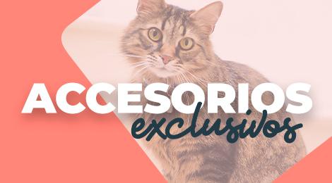 Accesorios exclusivos para gatos