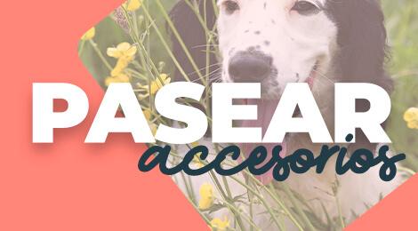 Accesorios de paseo exclusivos para perros, collares, correas y arneses para perros